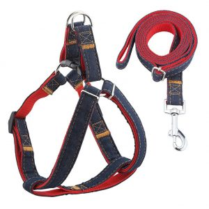 large-dog-collar-and-lead-set